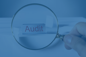 Audit-Logo